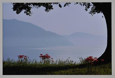 第52回滋賀県写真展覧会特選「秋・模様」 川端 伸一