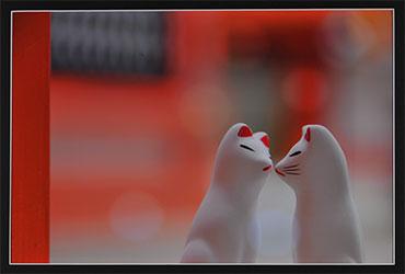 第52回滋賀県写真展覧会特選「恋物語♪」 藤﨑 優子