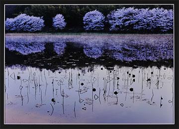 第52回滋賀県写真展覧会特選「春望」大島 喜八郎