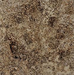 第67回滋賀県美術展覧会(平面の部)佳作「生々流転2013」