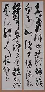 第67回滋賀県美術展覧会(書の部)特選「秋江」