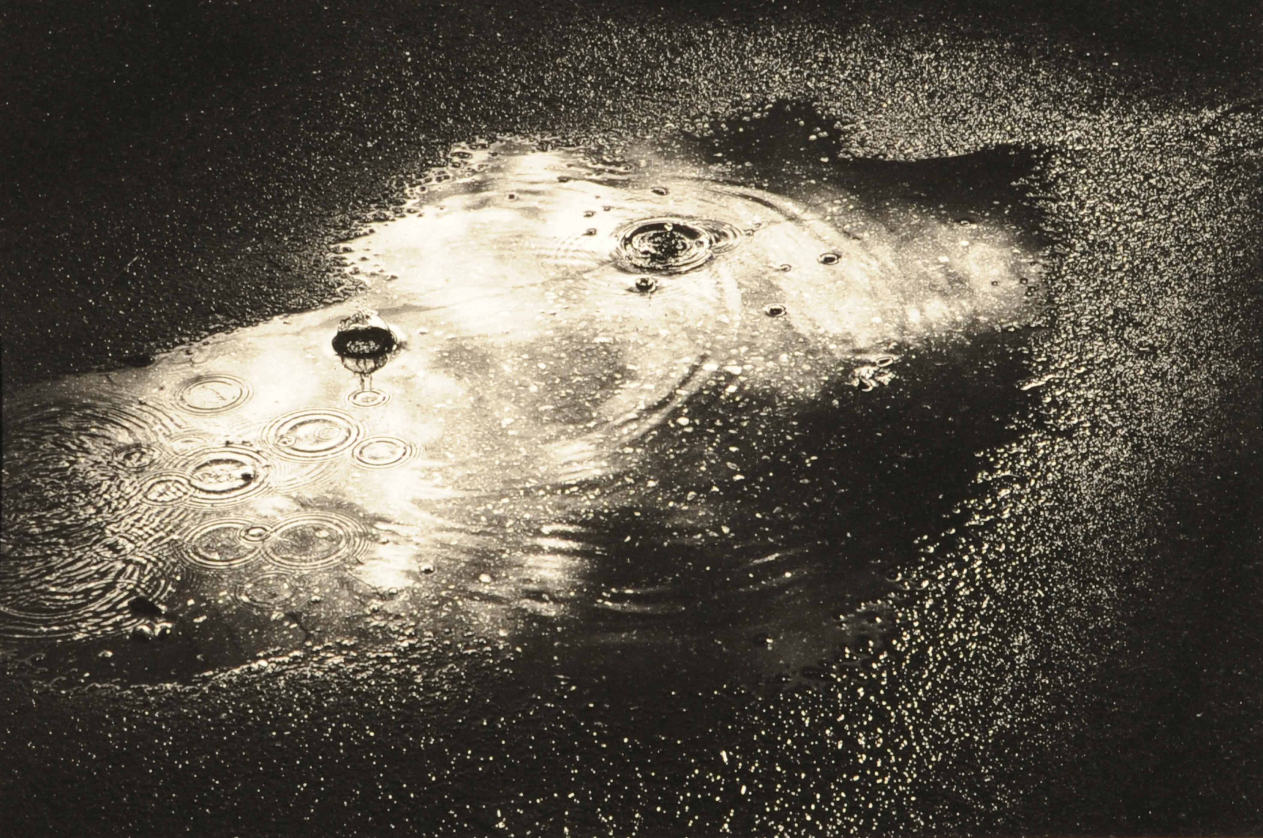 第55回滋賀県写真展覧会特選「雨あがり」 小菅 正一
