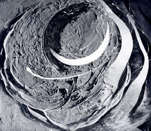第71回滋賀県美術展覧会(平面の部)特選「COSMIC FORCE」