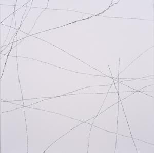 第71回滋賀県美術展覧会(平面の部)特選「鈍」