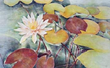 第73回滋賀県美術展覧会(平面の部)特選「水連」